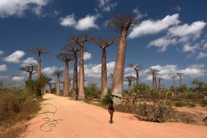 Madagaskar – Podstawowe Informacje i Nasz Plan Podróży