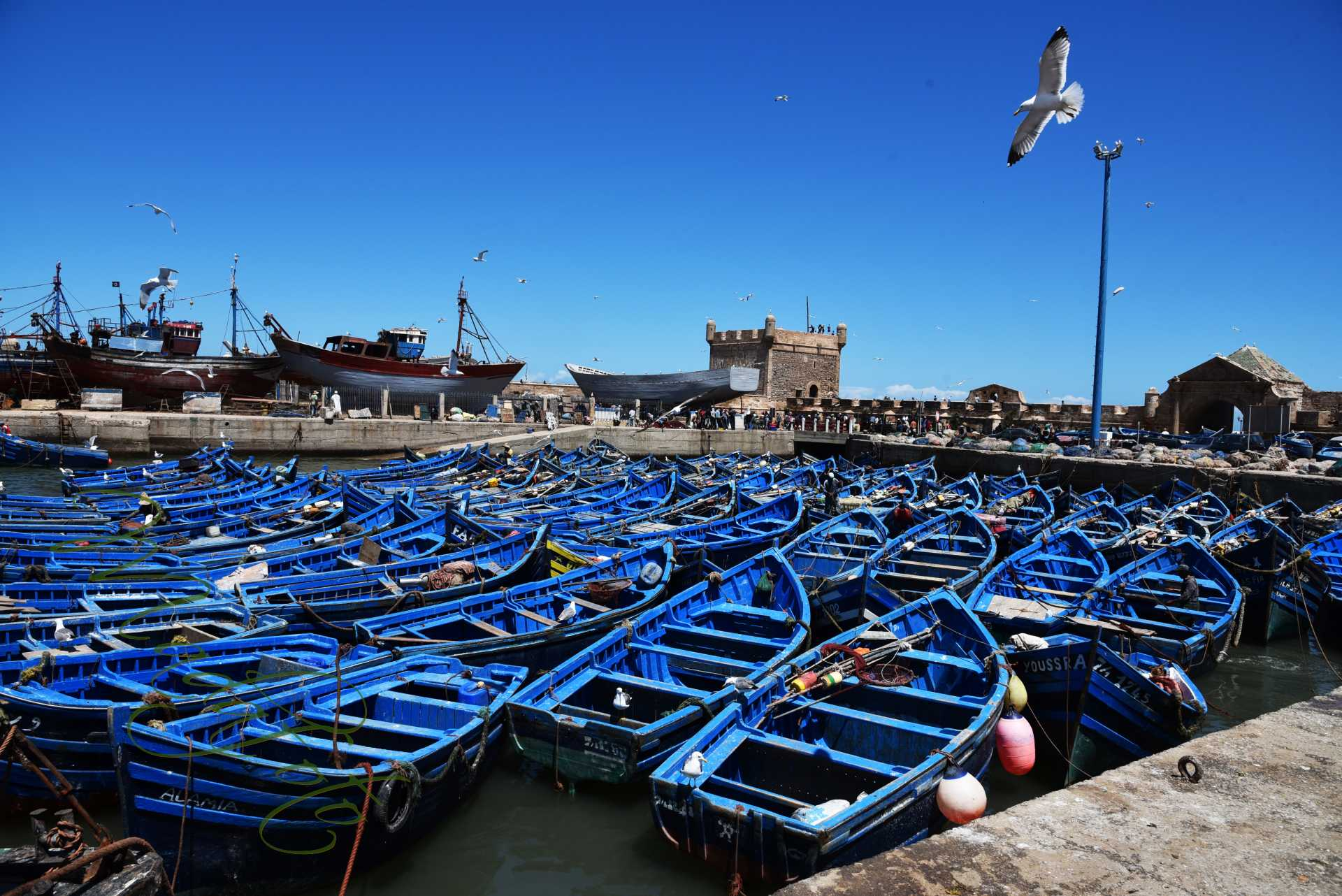 (6) Maroko – Essaouira (As-Sawira)